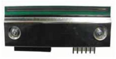 Thermoleiste für Bizerba GLPmaxx, 80 mm breit  (200 dpi)